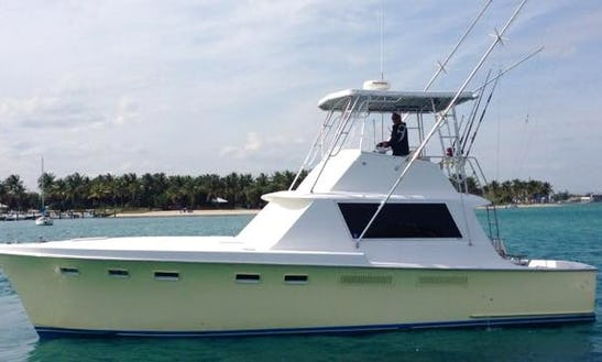 41' Sport Fisherman Charter In West Palm Beach, Florida