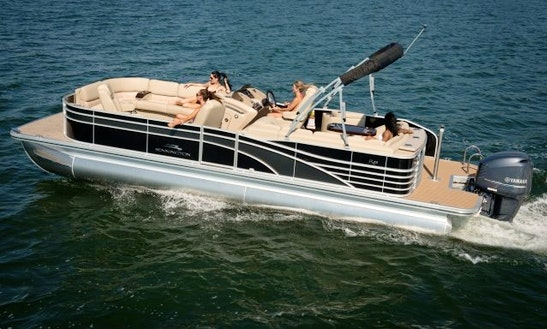 Large Patio Boat Charter In Clinton, New Jersey