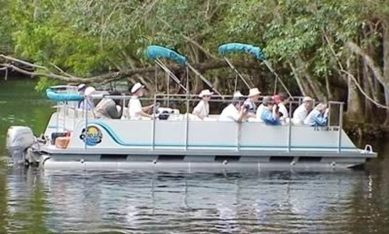 River Pontoon Tours In Silver Springs, Florida