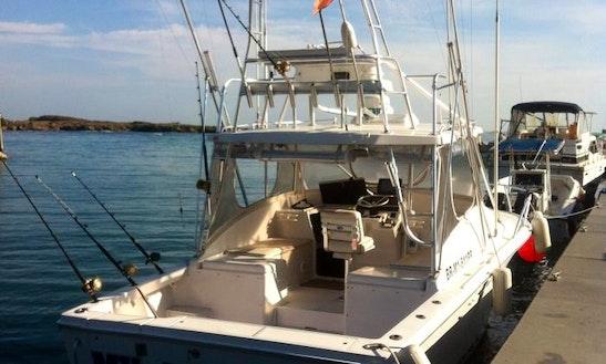 Enjoy Fishing On 36 Feet Sport Fisherman Boat In Puerto Plata, Dominican Republic