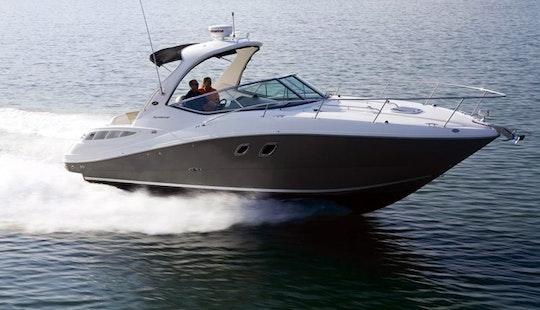 Motor Yacht Sea Ray 330 For Rent In Vasco Da Gama