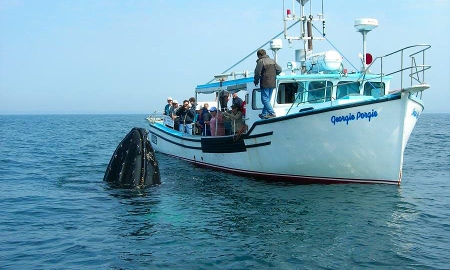 "45' Trawler ""Georgie Porgie"" Charter in Digby, Canada"
