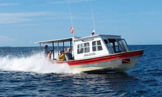 Scuba Diving In Panama