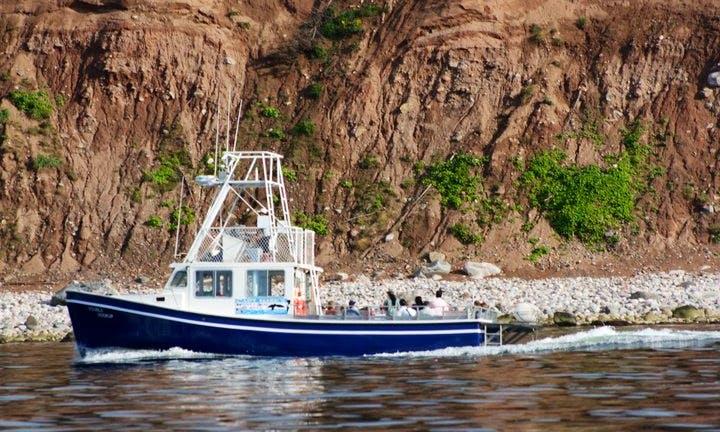 42' Trawler Charter in Inverness Subd. A, Canada