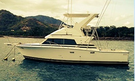 31' Sport Fishing Charter In Puerto Carrillo
