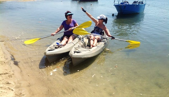 Reserve Single Kayak Rental In Maroochydore, Australia