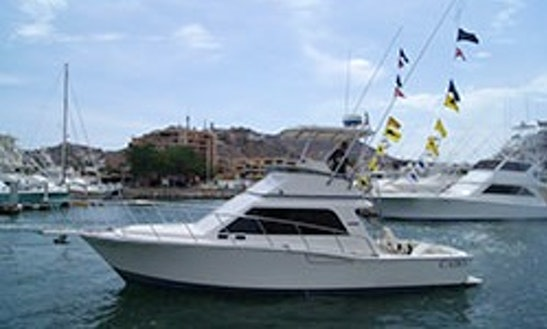 35ft Cabo Sport Fisherman In Cabo San Lucas, Mexico