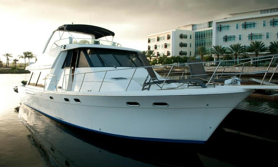 Bayliner Pilot Yacht Charter in Cayman Islands