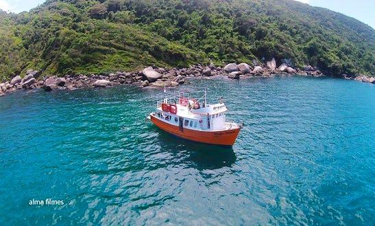 Dive Boat In Bombinhas