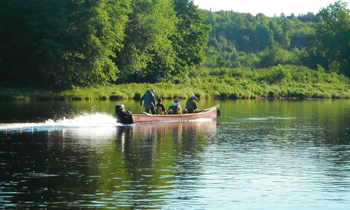 Fly Fishing Trips in the Miramichi River, Canada