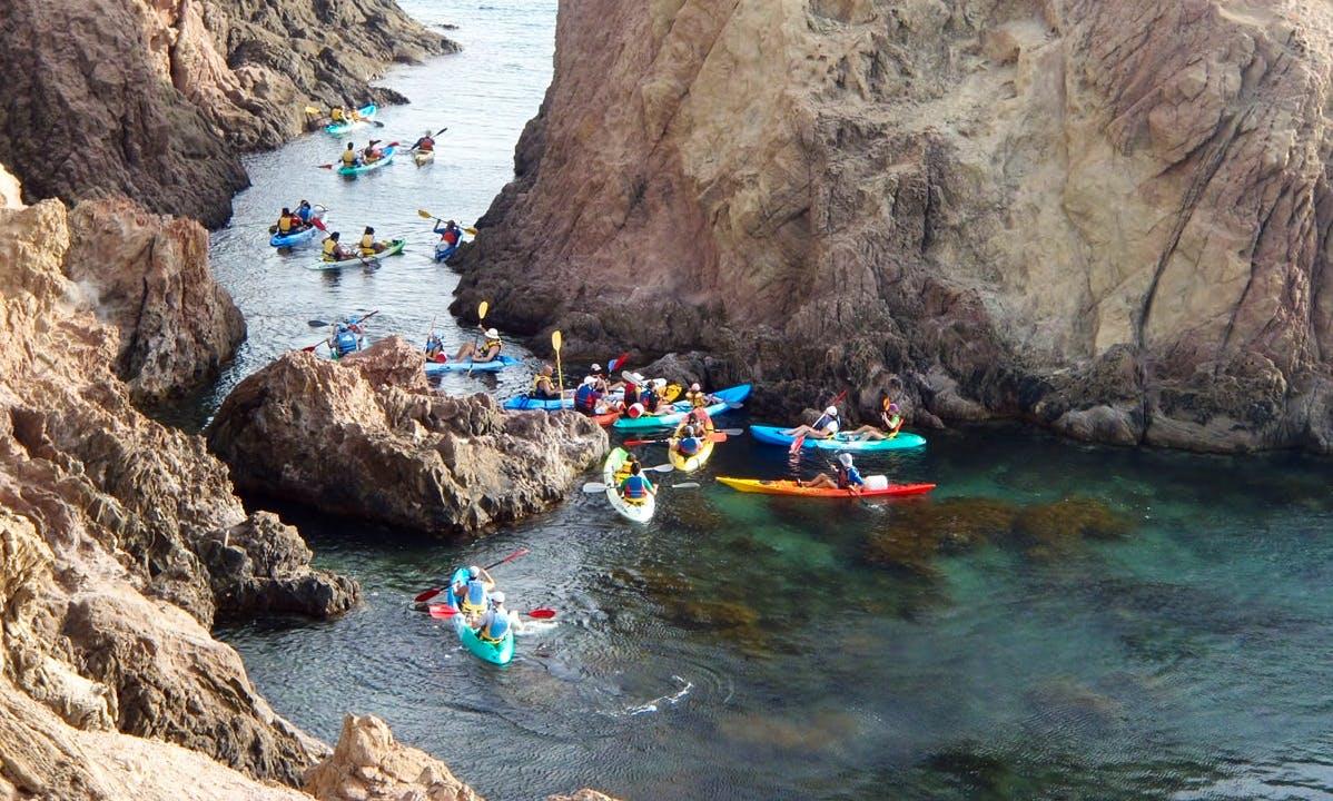 Guided Kayak Trips in Cabo de Gata