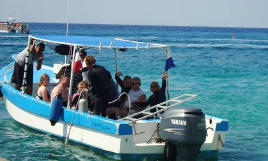 Dive Charter In San Miguel, Mexico