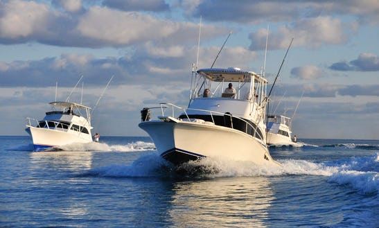 Enjoy Fishing In St.george's, Bermuda With Captain Sloan