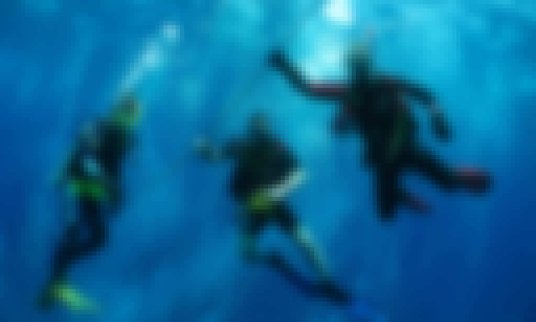 Diving Snorkeling Trips in the Pelicano Island