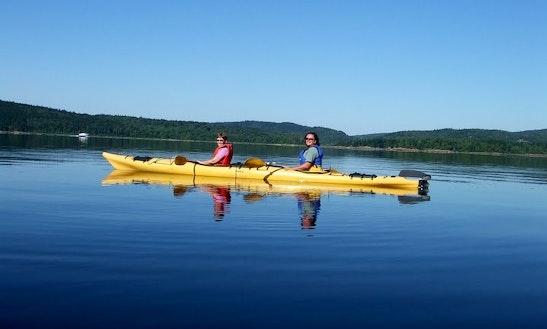 Kayaking Tours And Rental In New Brunswick