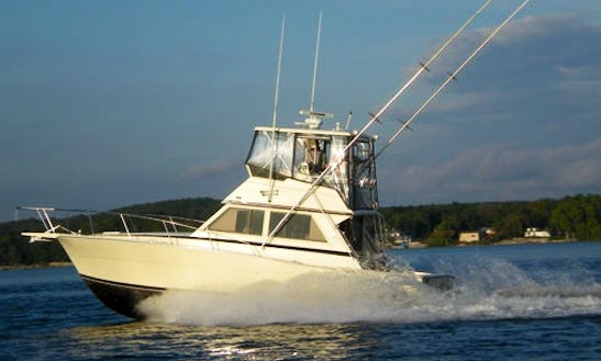 "Fishing  Charter On 35ft ""hooked Up"" Viking Yacht In Sevastopol, Wisconsin"