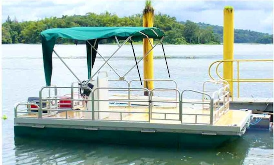 Bird Watching Tour By Boat In Panama
