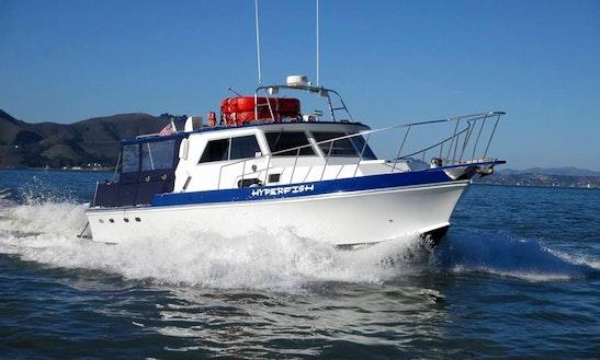 San francisco boat rentals as low as 70 getmyboat for Motor boat rental san francisco