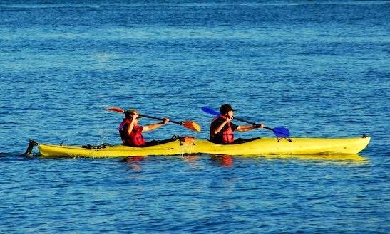 Kayak Rental In Akaroa, New Zealand