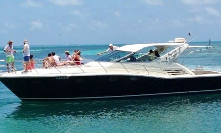 """Charter the Uniesse 48 """"Dolphin"""" Motor Yacht in Cancun, Quintana Roo"""