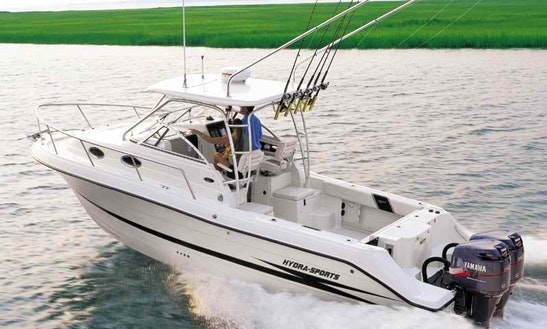28ft Hydra Sports Cuddy Cabin Fishing Boat Charter In Clinton, Connecticut