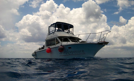 Boat Diving Trips & Training In San Miguel, Mexico
