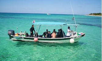 Diving Trips and Scuba Diving Courses with Bilingual Dive Instructor in San Miguel, Mexico