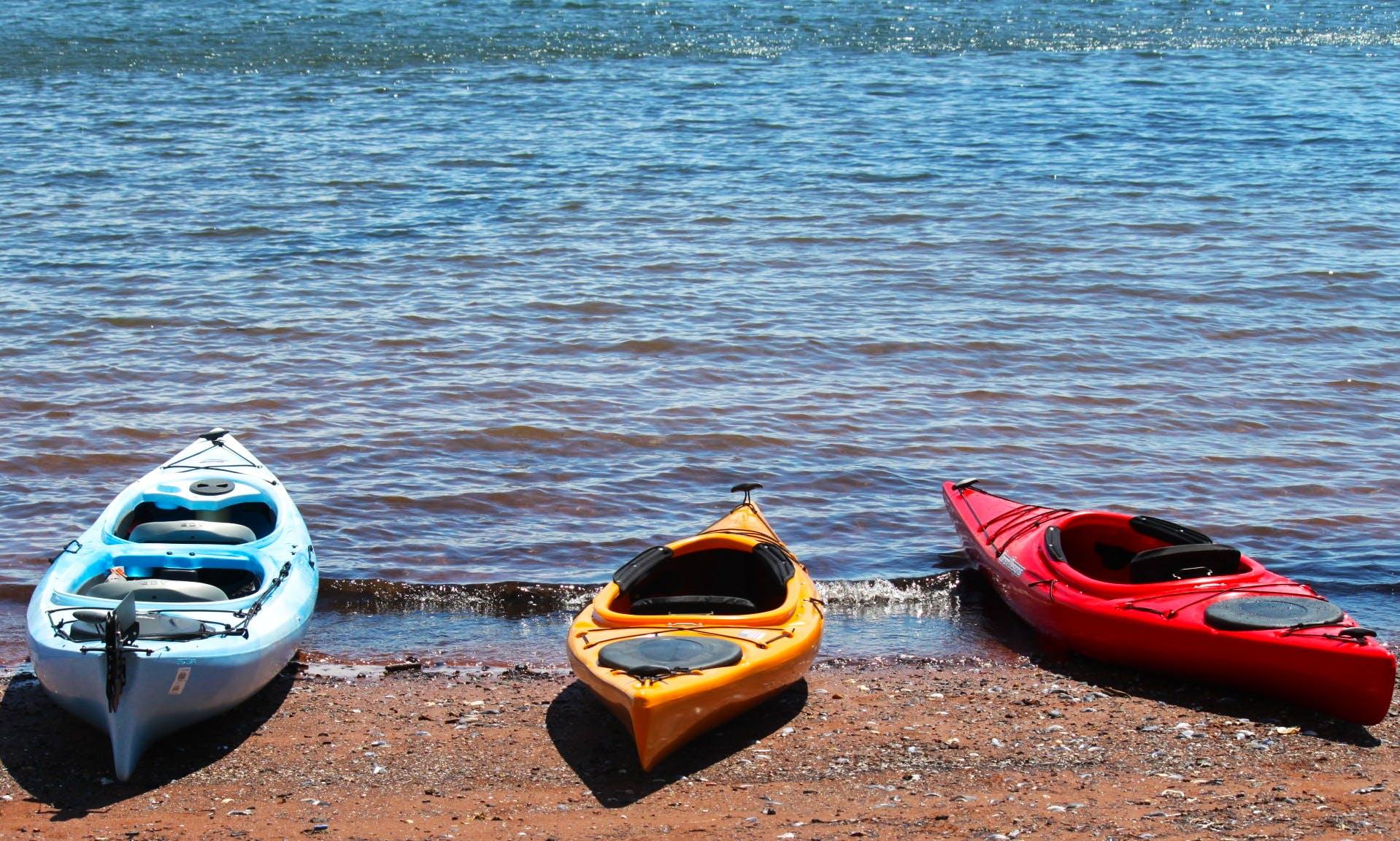 Kayak Rental In Charlottetown