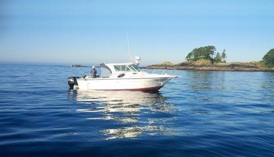 29' Baha Inshore & Offshore Fishing In Ucluelet, Canada