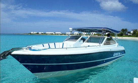 36' Motorboat Charter In North Hill Village