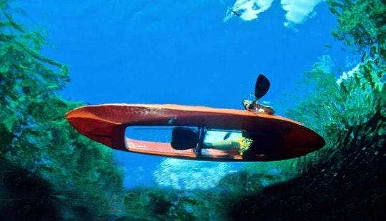 Glass Bottom Kayak Tour And Rental In Vieques