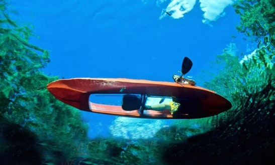 Glass Bottom Kayak Tour & Rental In Vieques
