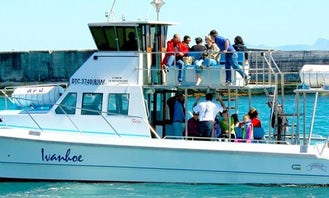 Hermanus Whale Watching Private Charter - Launch from Gansbaai, South Africa