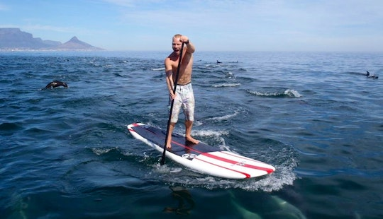 Take A Sup-lesson In Cape Town, South Africa