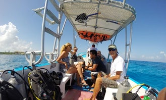 Dive Tour and Snorkel Trip in San Miguel, Mexico
