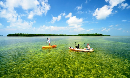 Guided Kayaking Tours In Key West