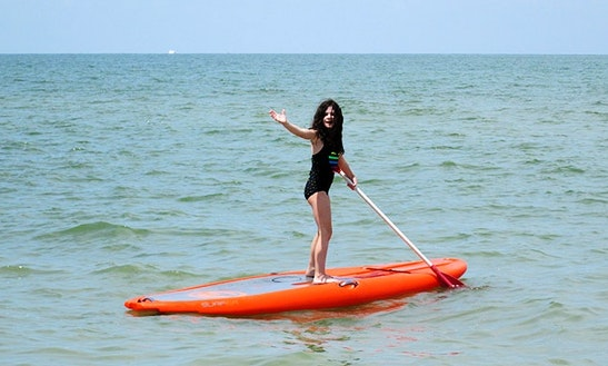Stand Up Paddleboard Rental In Naples