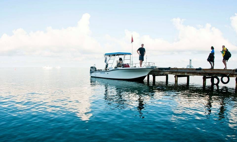 "27' Center Console ""Deep Blue"" Diving Charter in George Town, Cayman Islands"