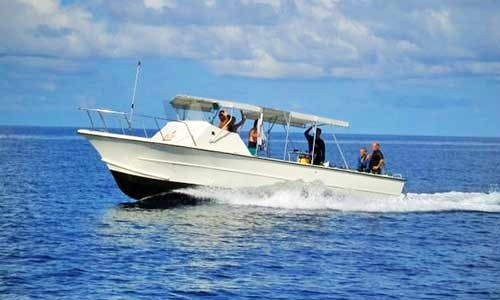 32' Carretta Center Console Diving Charter in George Town, Cayman Islands