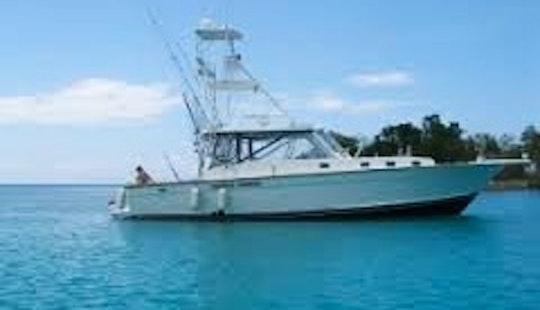 50' Sport Fisherman Fishing Charter In Ocho Rios, Jamaica