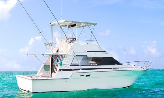 34' Luhrs Sport Fisherman In Punta Cana, Dominican Republic