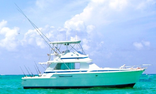 Exciting Fishing Trip On 42' Bertram Sport Fisherman In Punta Cana, Dominican Republic