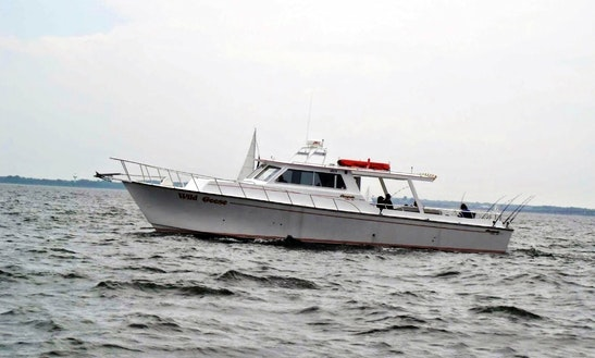 'wild Goose' Fishing Charter In Maryland