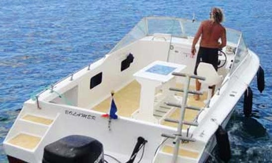 Diving Charters In Basse-terre, Guadeloupe