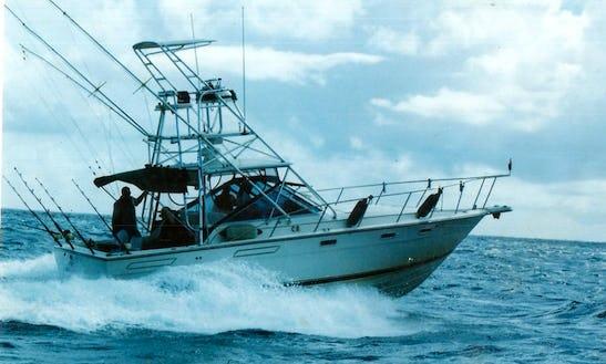 Sport Fisherman Fishing Charter In Philipsburg, Sint Maarten