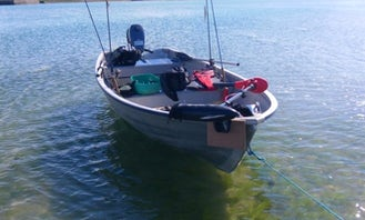 Guided Fishing In Wexford