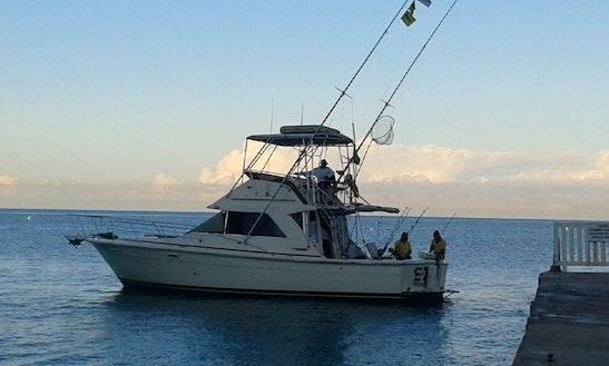 Sport Fisherman Fishing Charter In Montego Bay, Jamaica