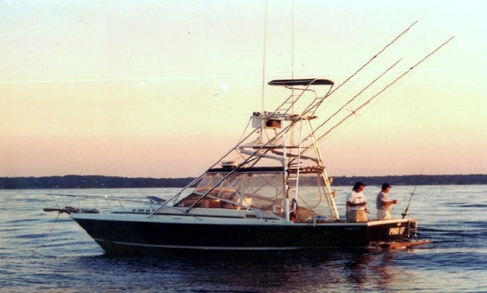 Enjoy Fishing In Rye, New York With Captain Danny