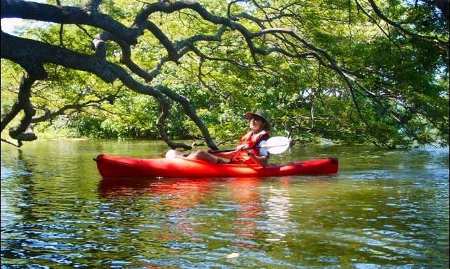 Kayak Tours and Rental In Nicaragua