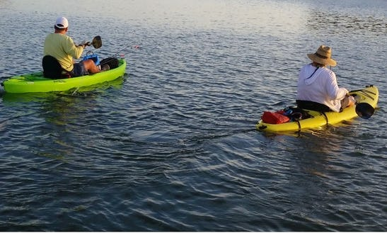 Kayak Rental In Clearwater